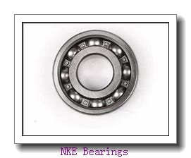 ISO NF19/750 cylindrical roller bearings