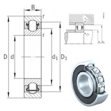 INA BXRE206-2RSR needle roller bearings