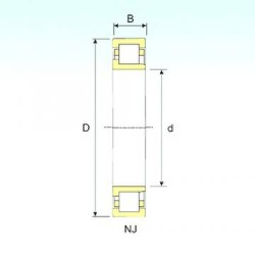ISB NJ 2226 cylindrical roller bearings