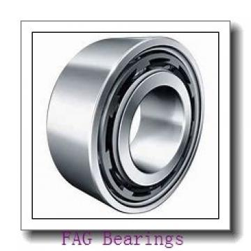 INA GE 100 AX plain bearings