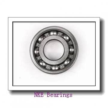INA K50X57X18 needle roller bearings