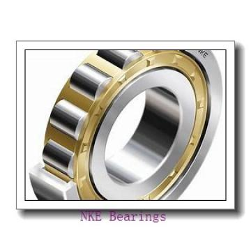 INA 89318-M thrust roller bearings